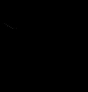 Black_Stork_Press_Final__Logo_